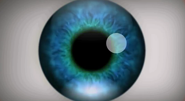 crazy optical illusion video