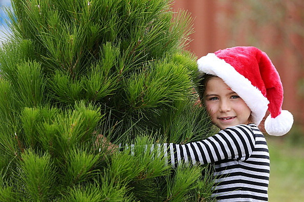 Girl with Christmas tree