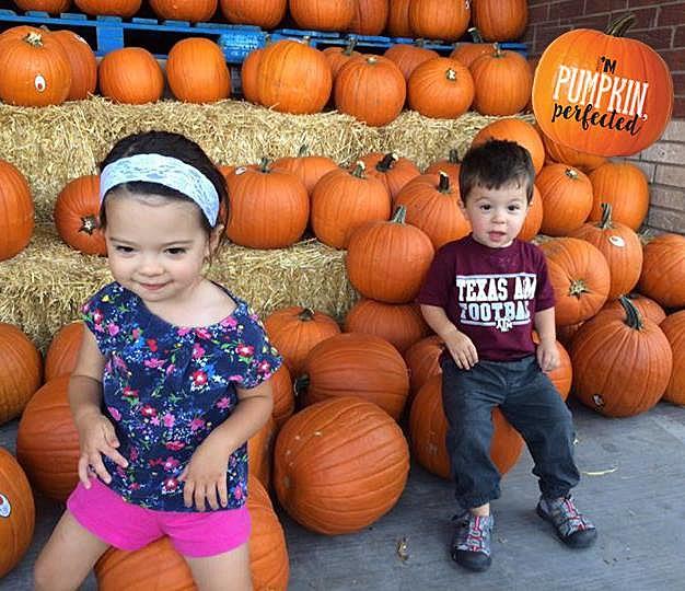 Market Street Pumpkins Wichita Falls