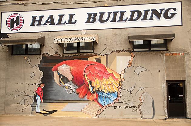Ralph Stearns Parrot Mural Wichita Falls