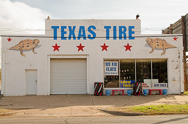 Ralph Stearns Horny Toad Mural Texas Tire Wichita Falls