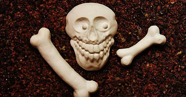 bone-pickin-637x333 (1)
